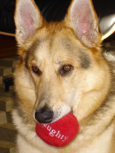 Cleo Chooses Naughty over Nice Ball