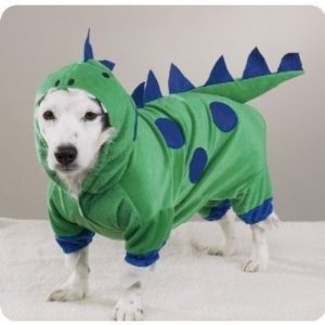 Dragon_dog