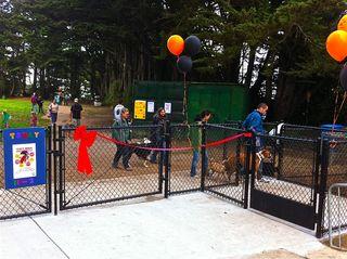 New Fence @ UDDP