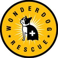 WonderDogRescueSF