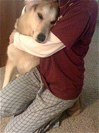 Cleo's Dog Devotion