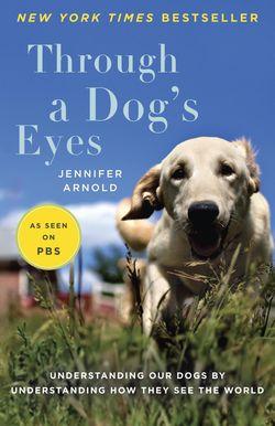 Through-Dogs-Eyes-Paperback