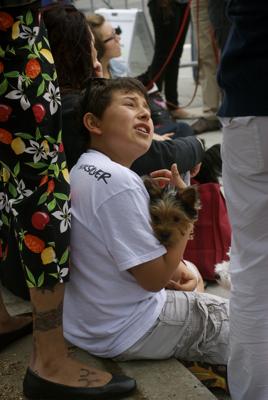 Kids-Dogs-Fun