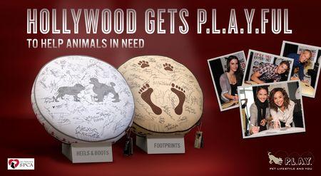 Hollywood-Auction-SF-SPCA