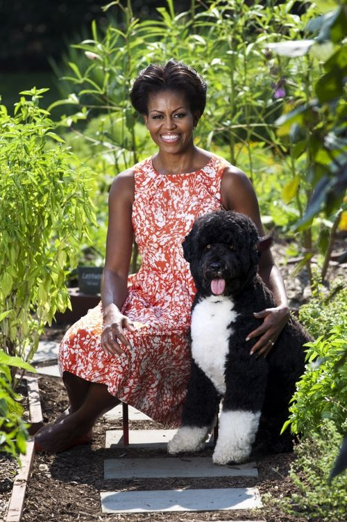 The_first_lady_and_bo