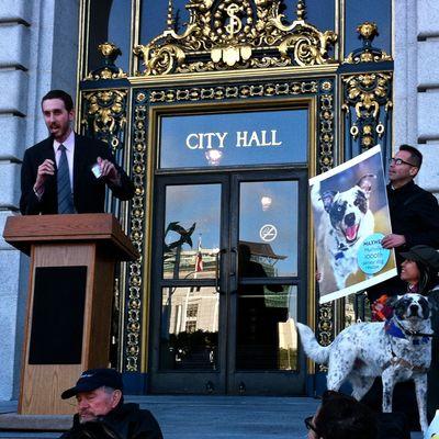 SF Supervisor Scott Weiner at Muttville Day