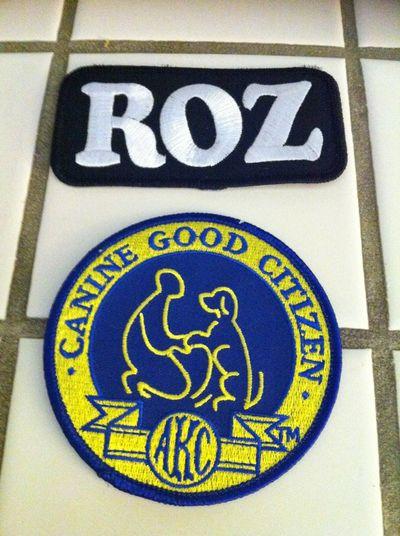 akc-good-citizen-therapy-dog